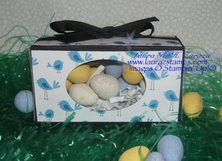 bird-box #2